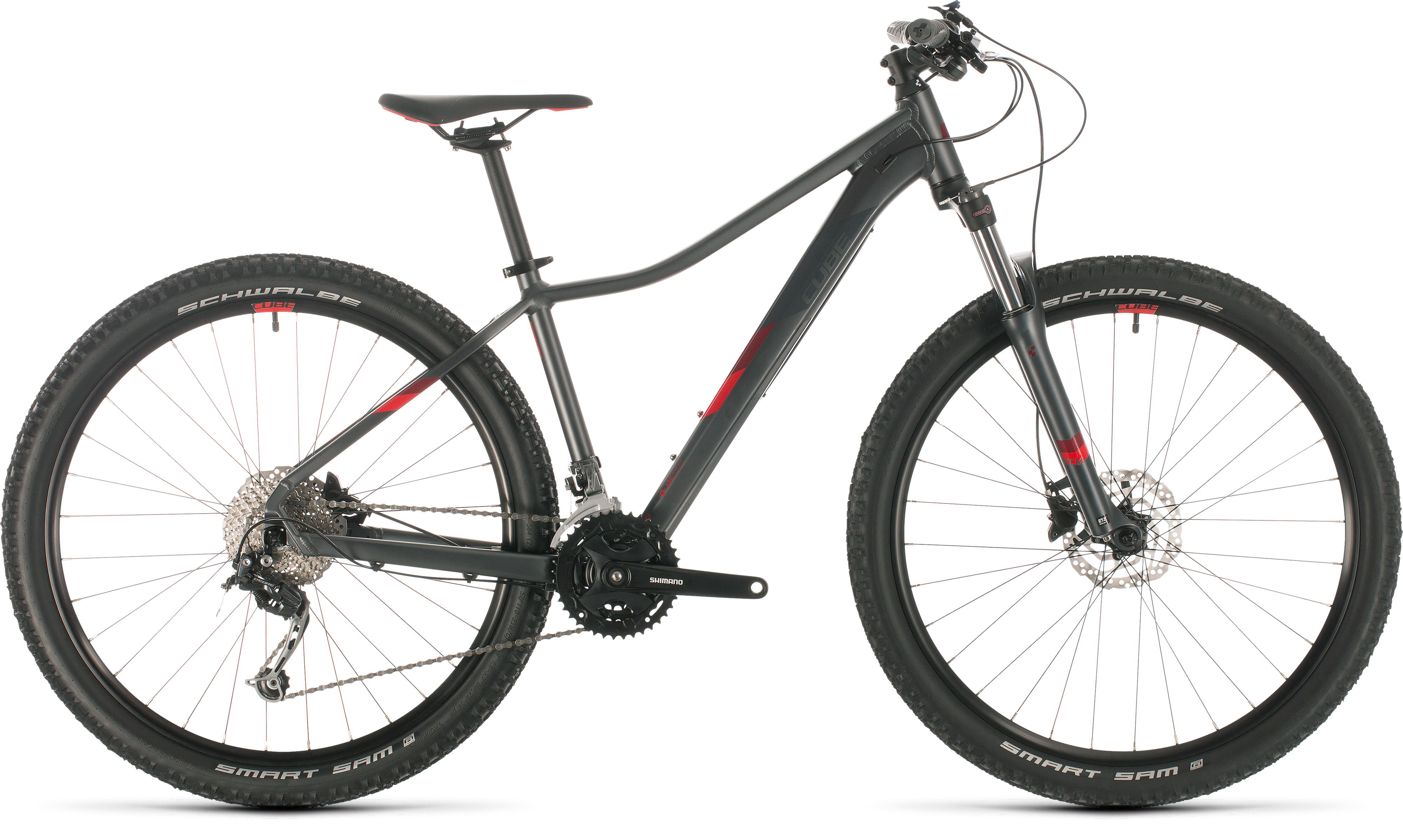 Cube Access WS Pro 29 (2020)