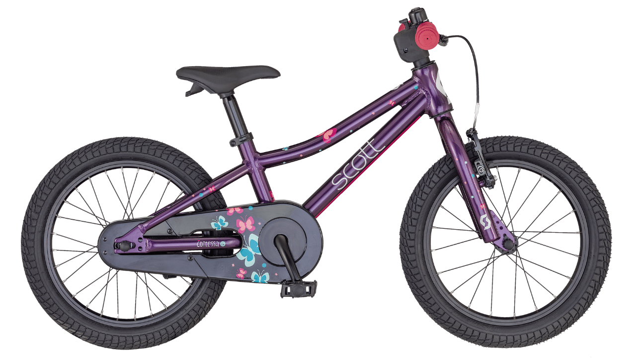 Scott Contessa 16 (2020)